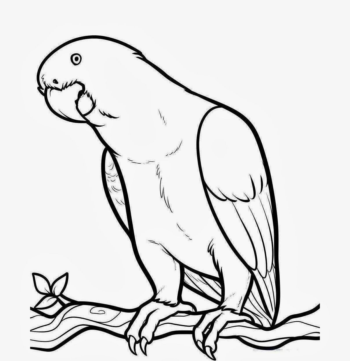 Drawing For Kids To Colour Bird