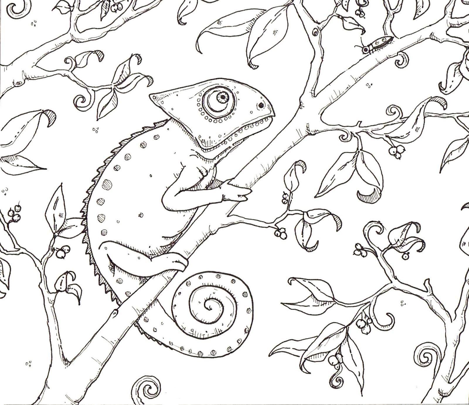 Camaleon Dibujos De Camaleones Camaleon Para Colorear Animalitos Para Colorear