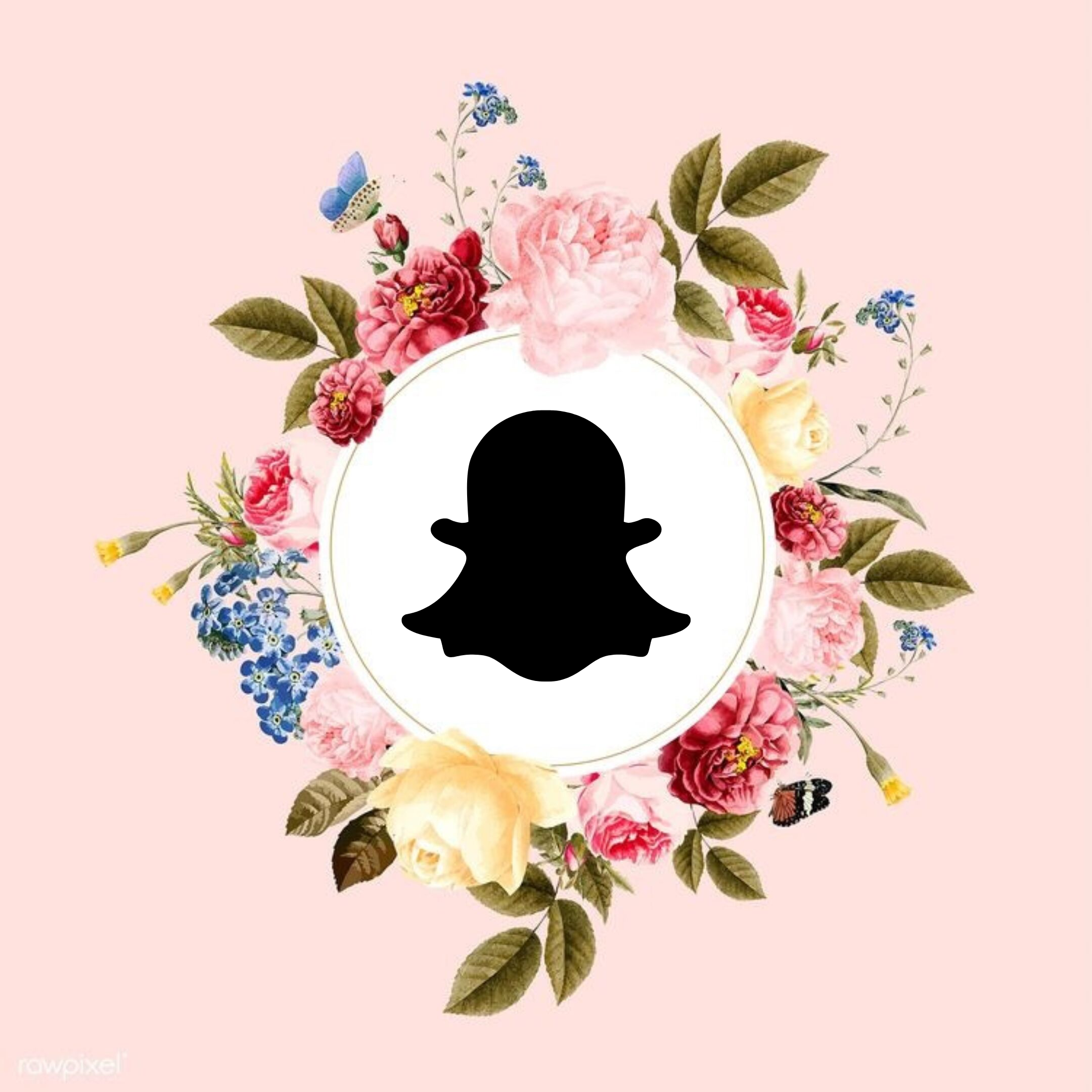 Pink Flower Wreath (With images) Instagram icons