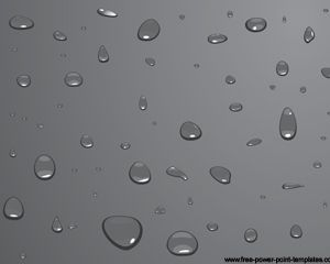 Free Water Drops Powerpoint Template Over Grey Color  Nature