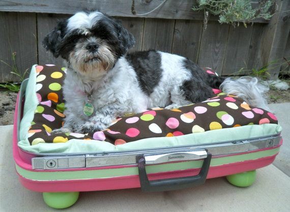 Retro Dog Bed