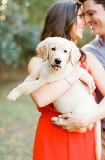 engagement photo with puppy | Anna K Photography