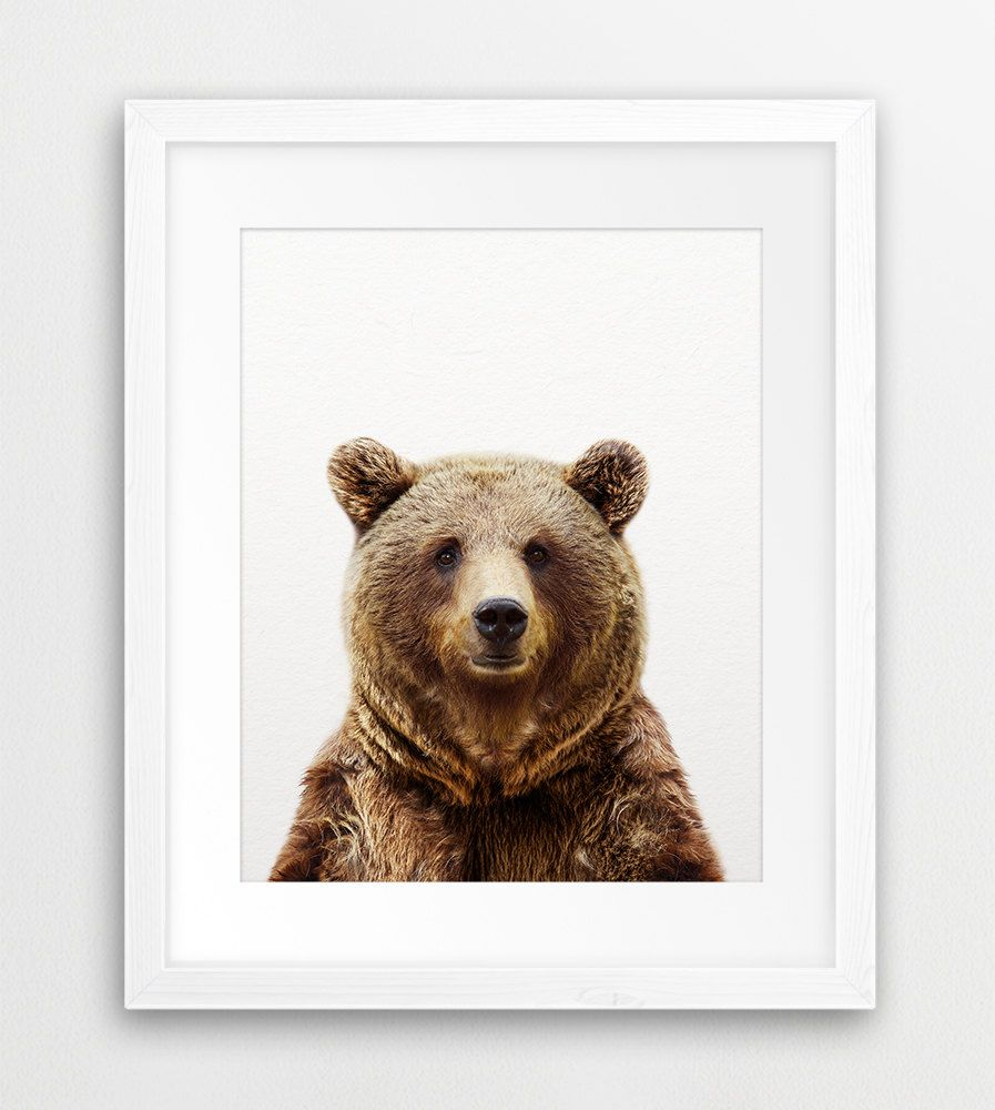 instant download bear print grizzly bear wall art woodlands