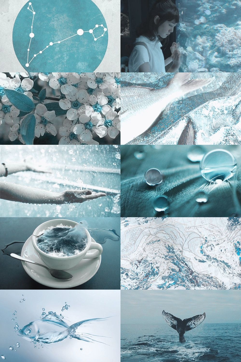 Aesthetic Shout Out Soft Persocom In 2020 Aesthetic Collage Pisces Witch Aesthetic