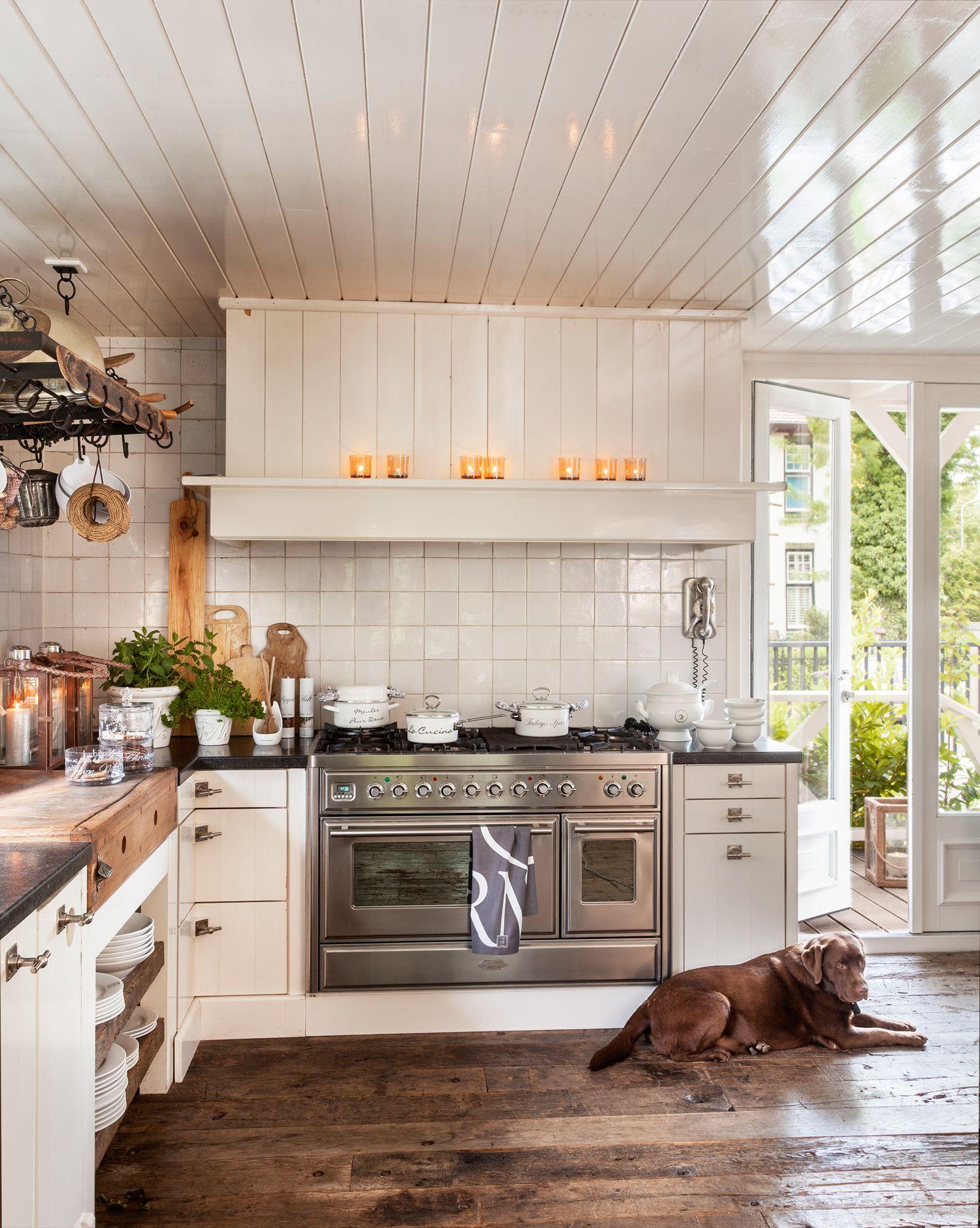 Cocina rústica con muebles blancos y suelo de madera, perro y salida ...