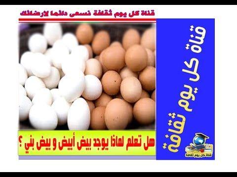 بيض هل تعلم لماذا يوجد بيض أبيض ناصع و بيض بني غامق الثقافة العامة Eggs Convenience Store Products Food