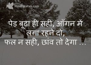 Old Tree Hindi Quote Hindi Quotes Short Quotes Tree Quotes