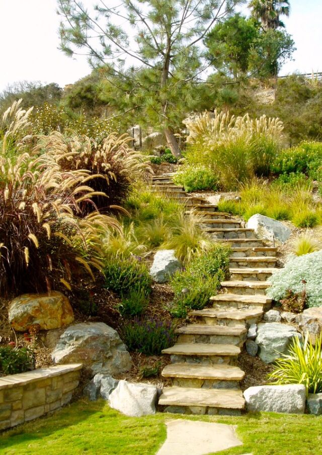 How I wanna do my backyard slope. Lots of grasses and large rocks ...