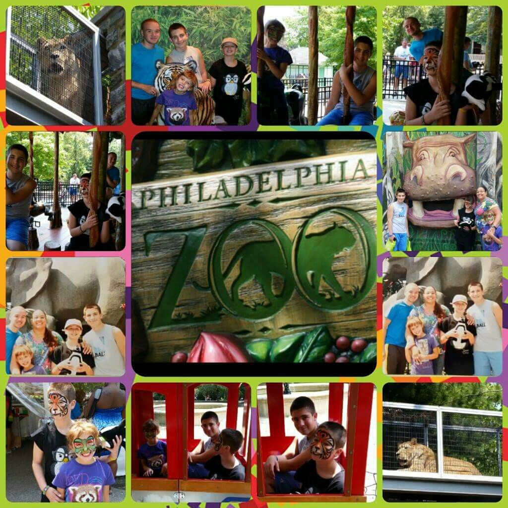 Zoo fun August 2014