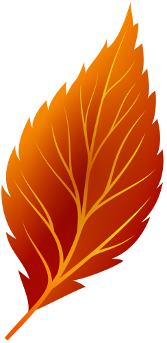 Red Autumn Leaf Png Clip Art Fall Leaves Drawing Leaf Drawing Autumn Leaves