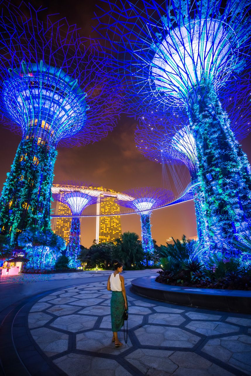A Singapore Icon Gardens By The Bay Pics Tickets Hours Tips Gardens By The Bay Singapore Garden Singapore Travel
