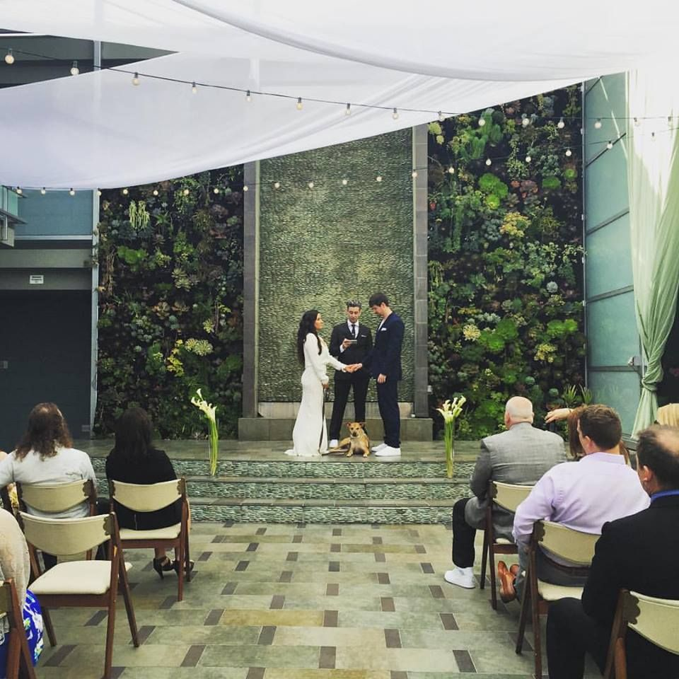 An Eco Wedding With Our Succulent Wall As Your Backdrop At Shade Hotel Manhattan Beach Shadeweddings Shadehotelmb