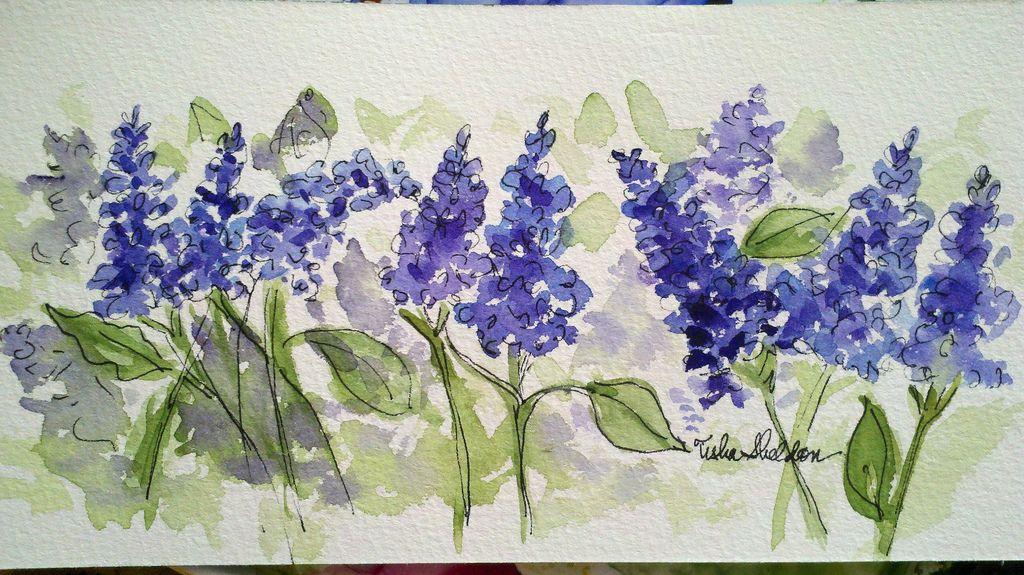 Lilacs, Tisha Sheldon