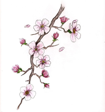 Cherry Blossom Branch Blossom Tattoo Cherry Blossom Tattoo Cherry Blossom Tattoo Meaning