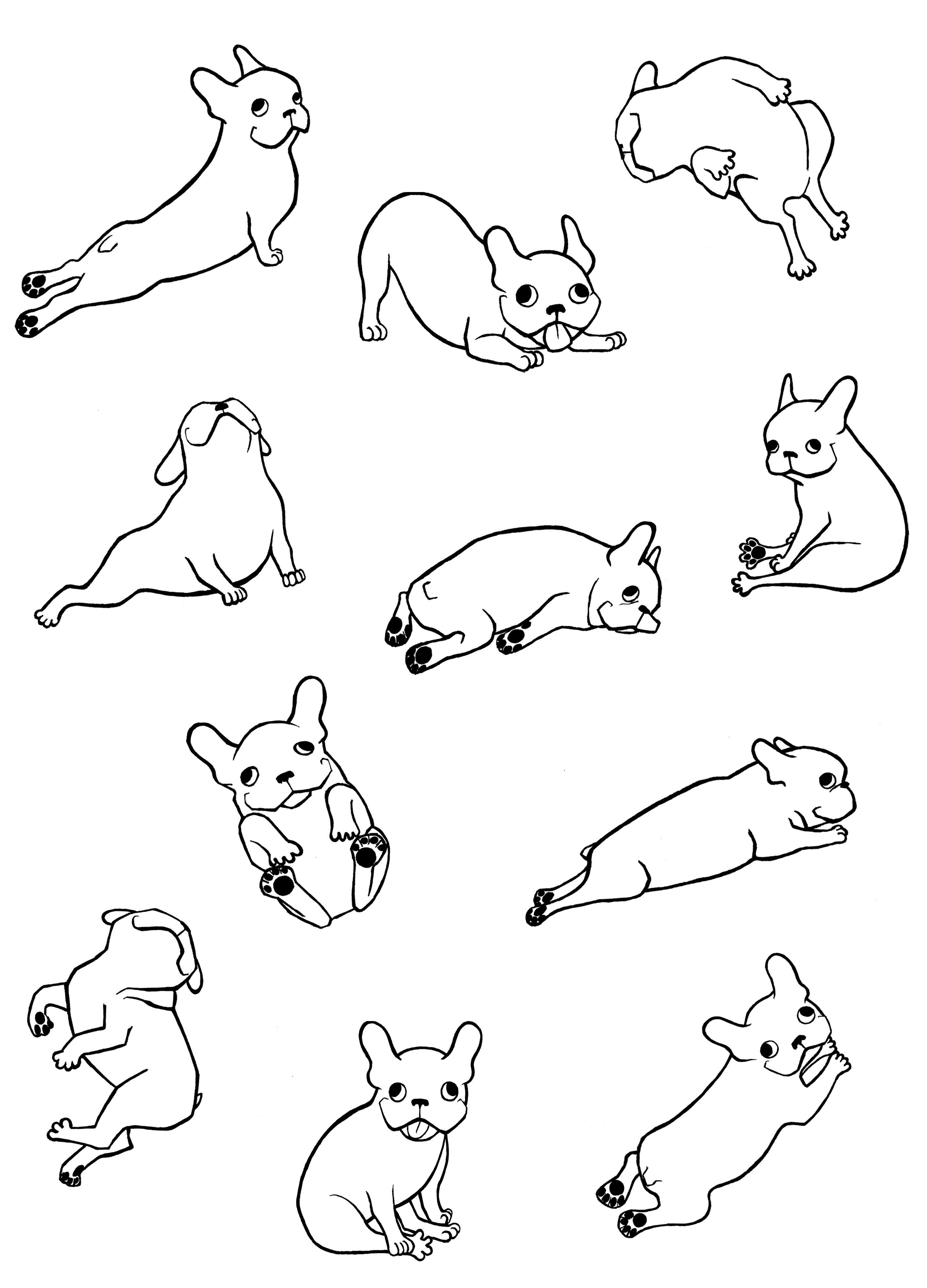 french bulldog frenchie bulldogs frenchies Illustrations for konic