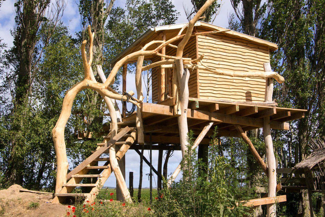 Baustelle Baumhaus Baumhaushotel, Planen und bauen, Baumhaus