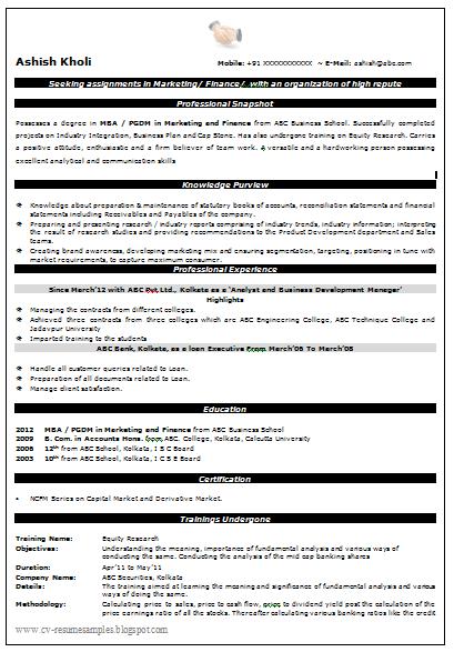 24 best marketing resume templates
