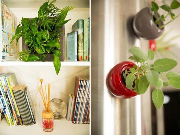 cadre v g tal et sph re v g tales pour votre int rieur tableauvegetal planteverte decoration. Black Bedroom Furniture Sets. Home Design Ideas