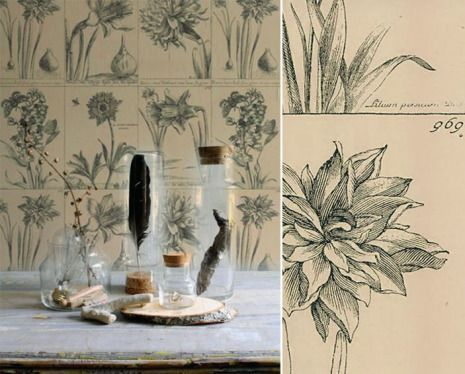 papier peint herbier tendance-kc-3 moodboards \ trends Pinterest