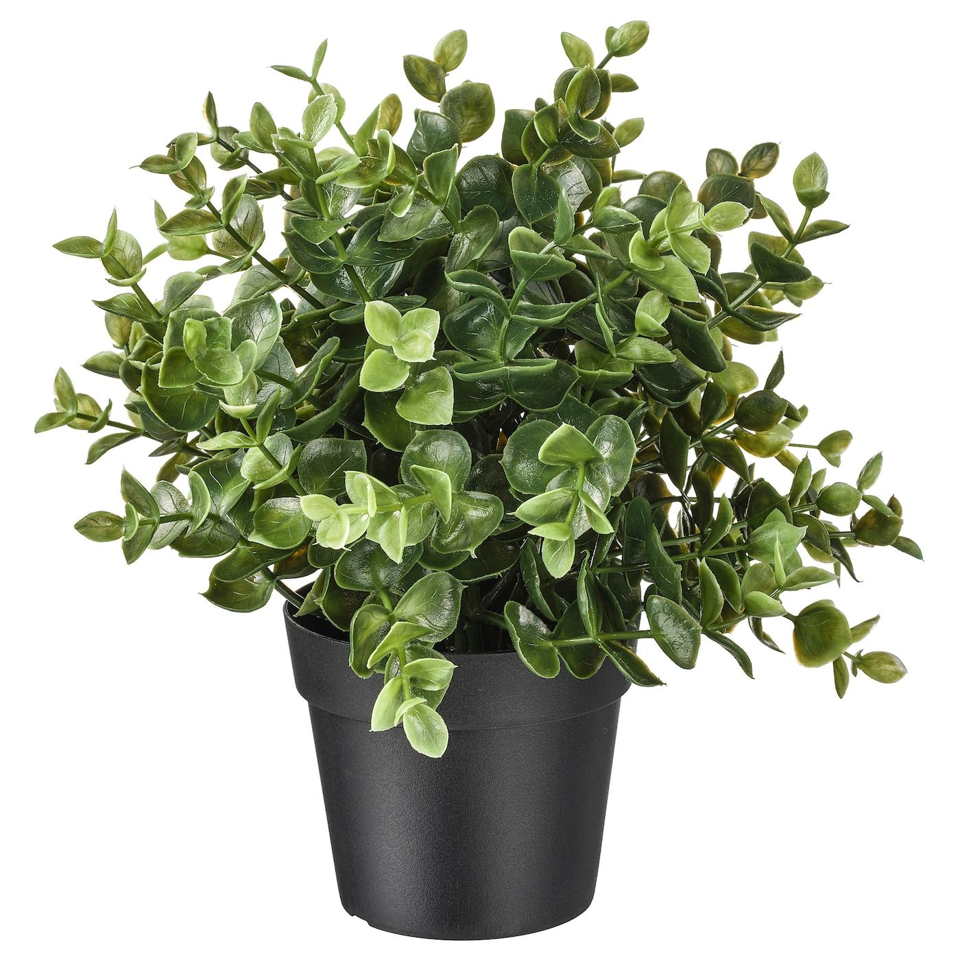 Fejka Artificial Potted Plant Oregano Ikea In 2020 Small Artificial Plants Artificial Potted Plants Artificial Plants Outdoor