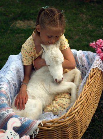 Todos quisimos un poni cuando éramos pequeños. Sin duda, esta niña recordará este día como uno de los más dulces.