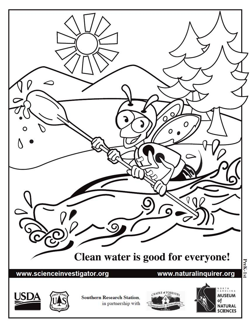 Our Natural Inquirer Bee Coloring Sheets Http Www Naturalinquirer Org Prek 5 Educational Resources V 98 Html Science Journal Educational Resources Student