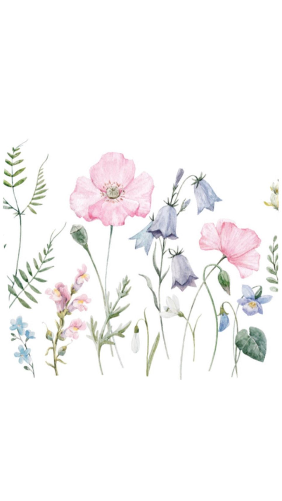 Pin By Pvdspvc On Kasturi Flower Wallpaper Backgrounds Phone