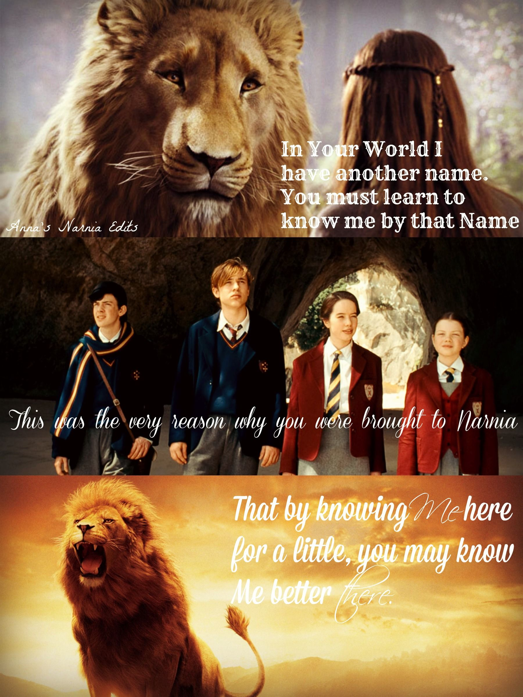 Pin by Kerry Hall on Chronicles of narnia Christian C.S Lewis ... for Narnia Movie Quotes  45hul
