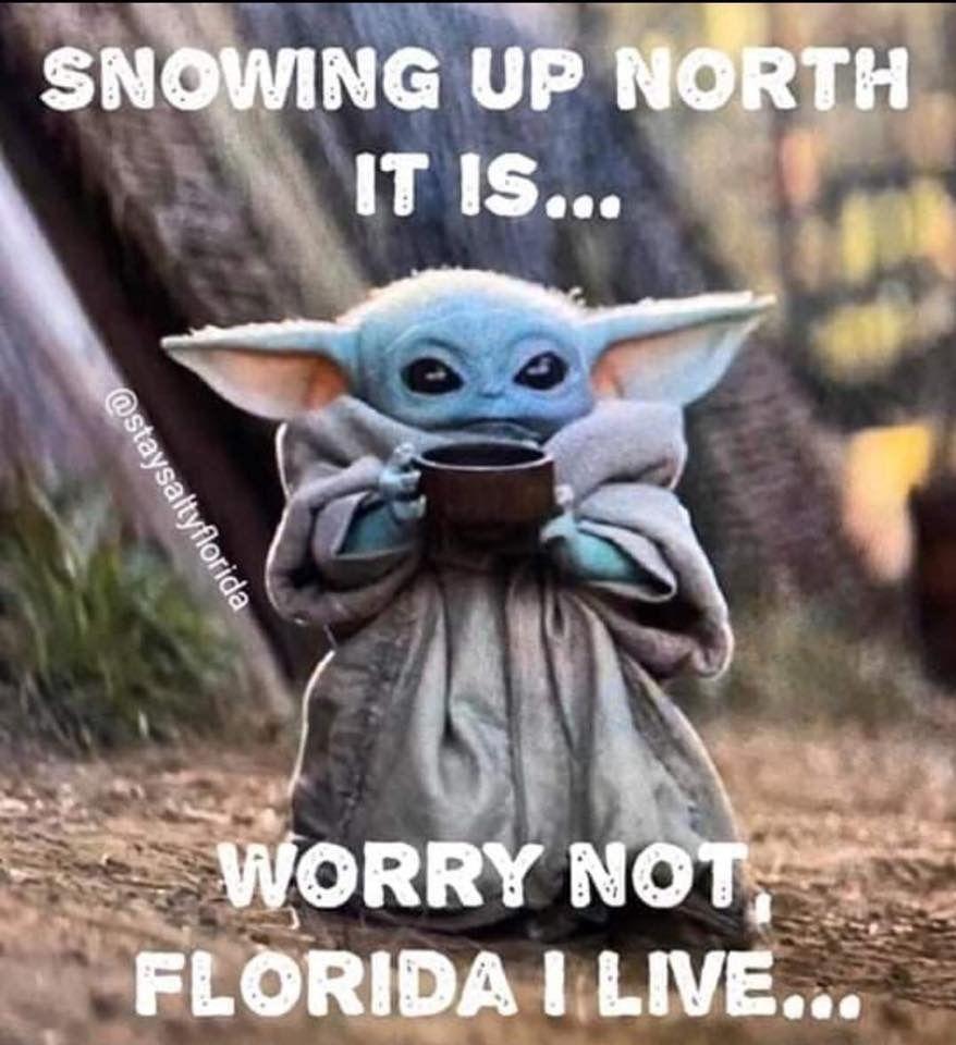 Pin By Clairita On Life In Florida Yoda Meme Yoda Wallpaper Star Wars Memes