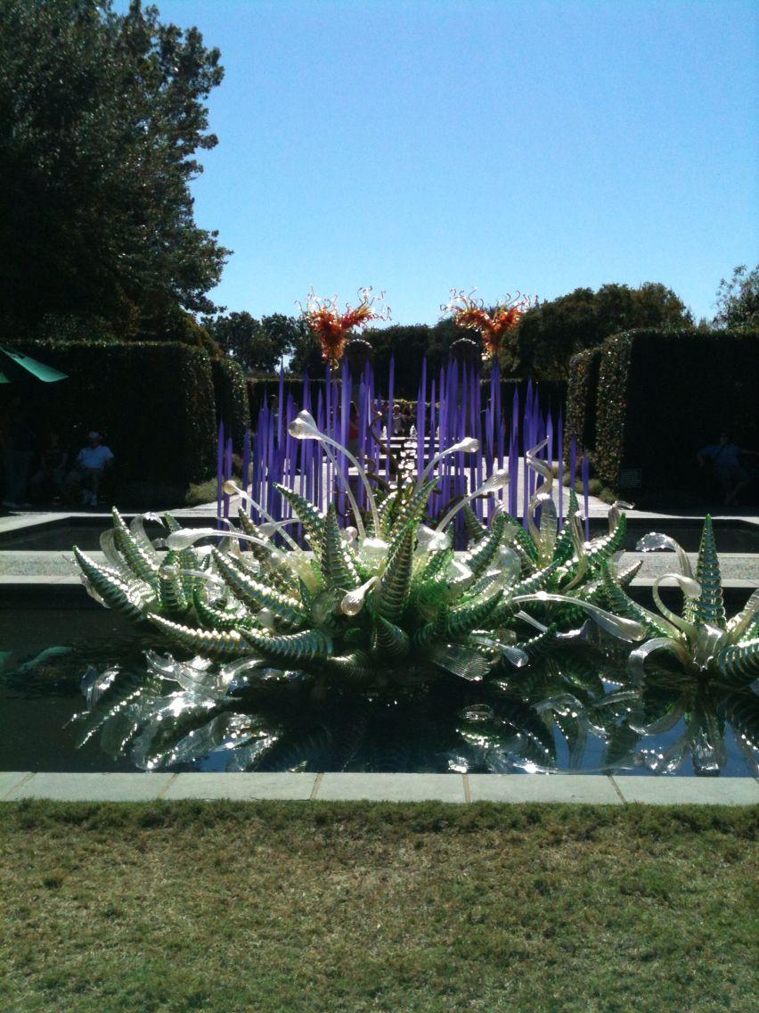 Dale Chihuly at Dallas arboretum