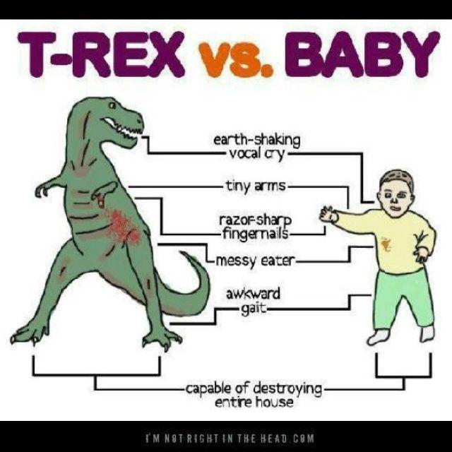 Toddler Humor I Dont Want Kids T Rex Humor Toddler Humor