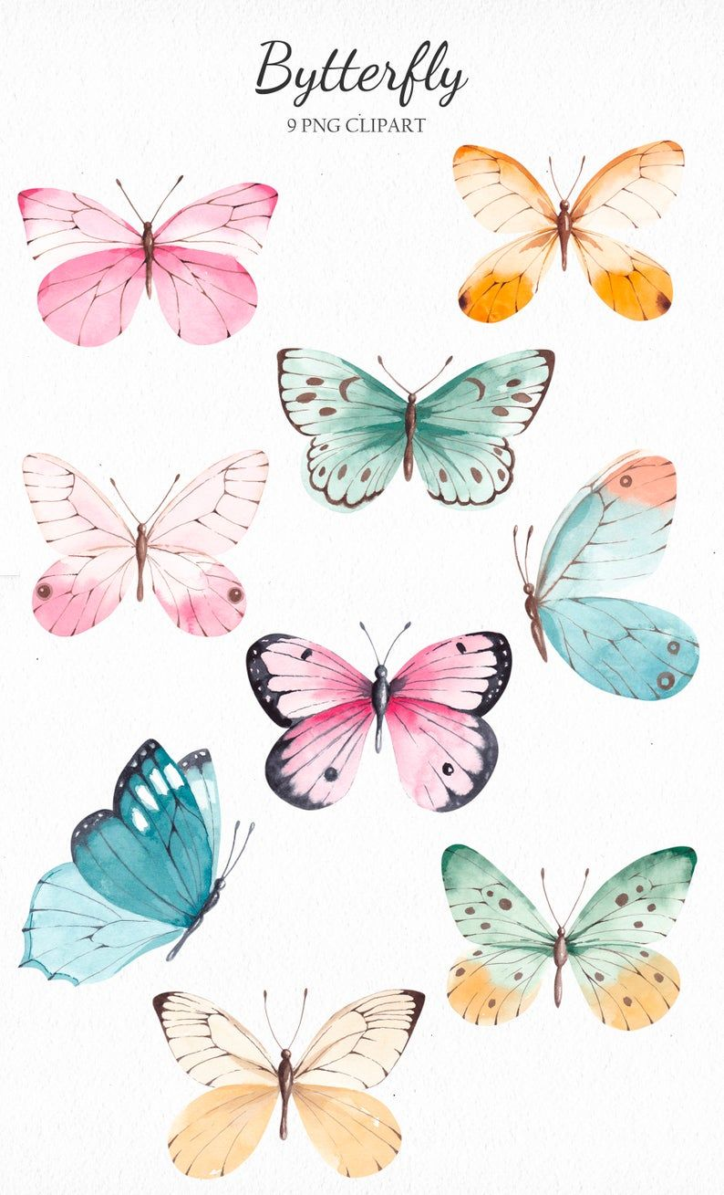 Watercolor Butterfly Clipart, Summer Vintage Clipa