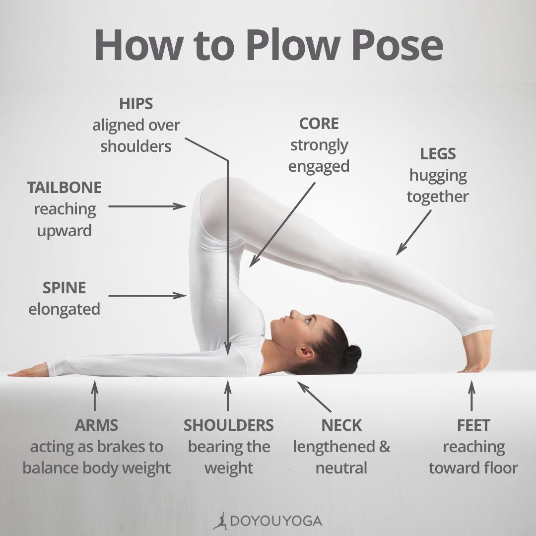 Halasana 101 What are you favorite cues for Plow Pose? | Plow pose yoga,  Yoga tips, Yoga for beginners