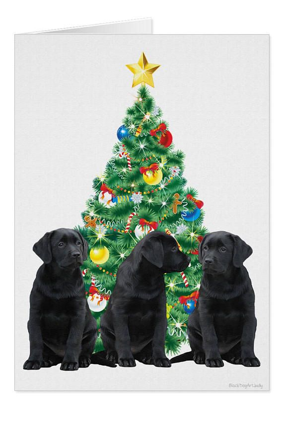 Black Lab Cards F10BCAR - Holiday Cards - Labrador Christmas Cards ...