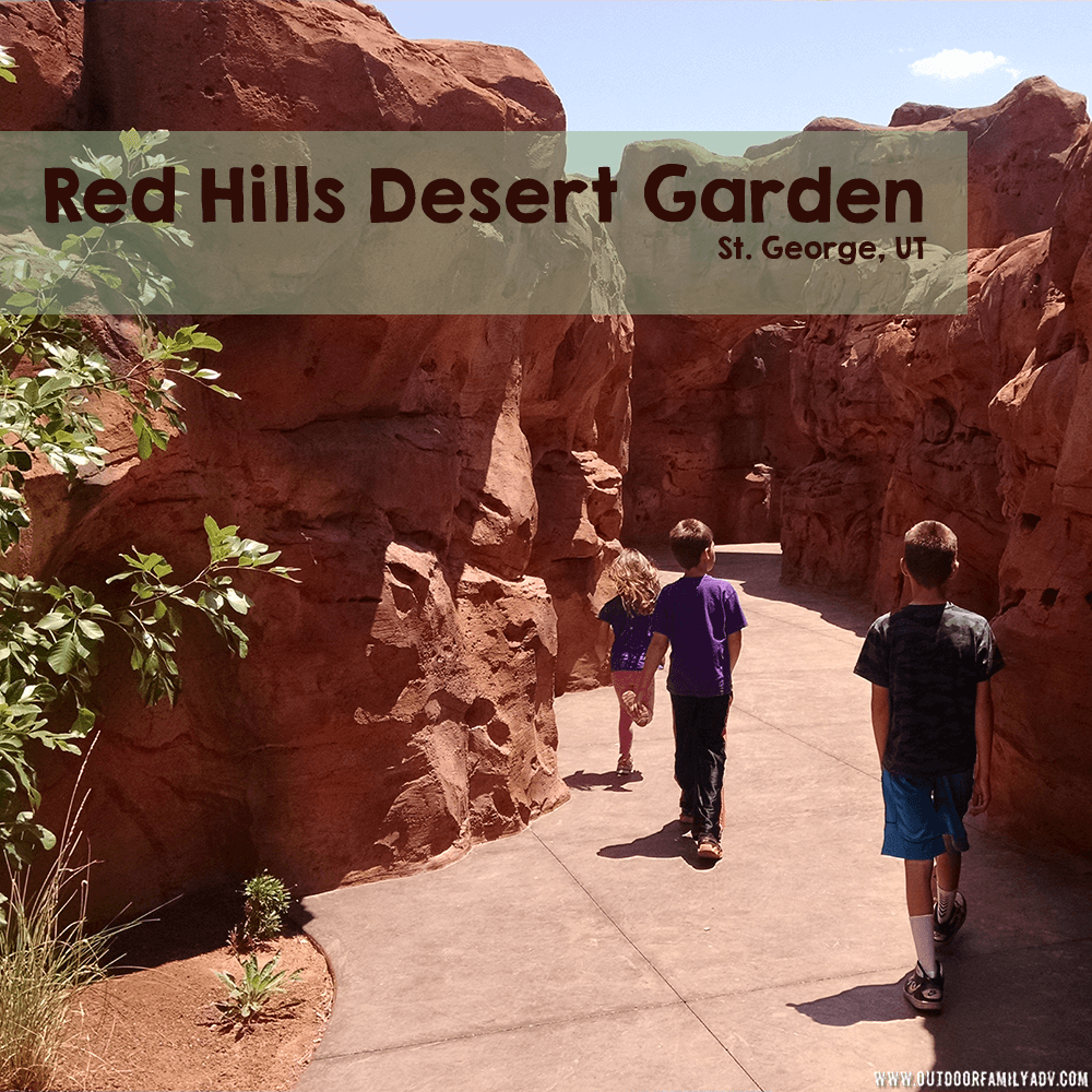 A free garden that is wonderful to visit and learn about our local plant life and wildlife. The kids can see beneath a river and walk through a slot canyon! #desertlife