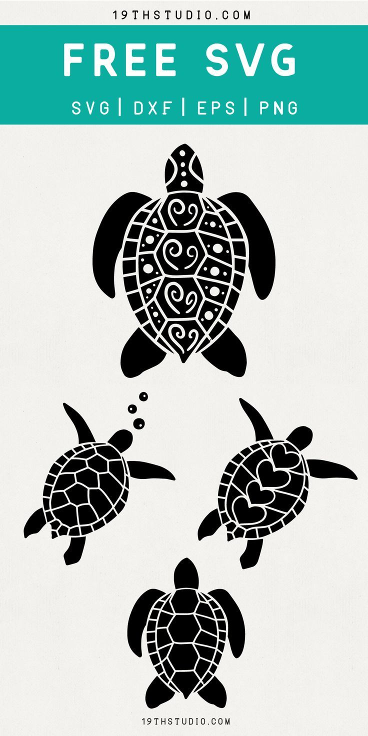 Download Sgraffito by Rosemary g in 2020 | Cricut free, Turtle ...