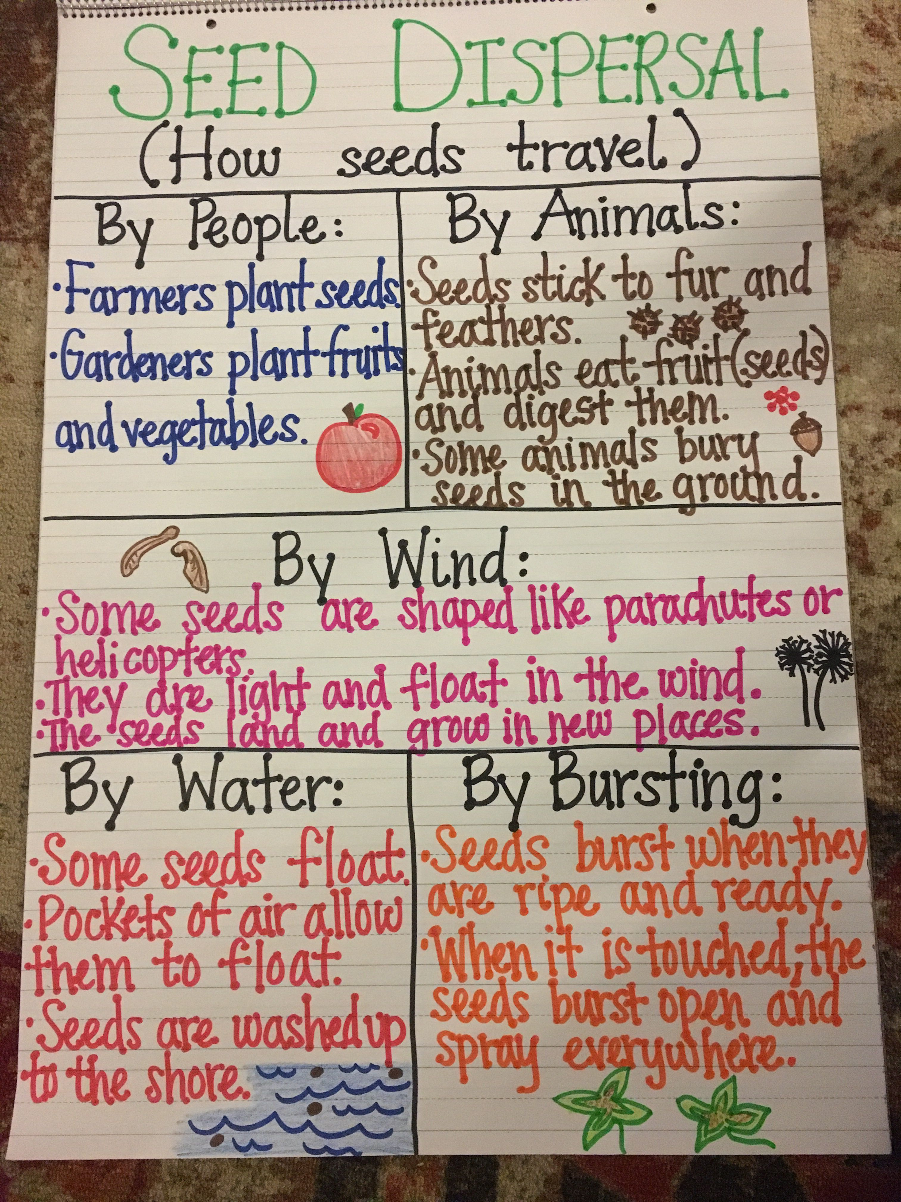 hight resolution of seed dispersal anchor chart