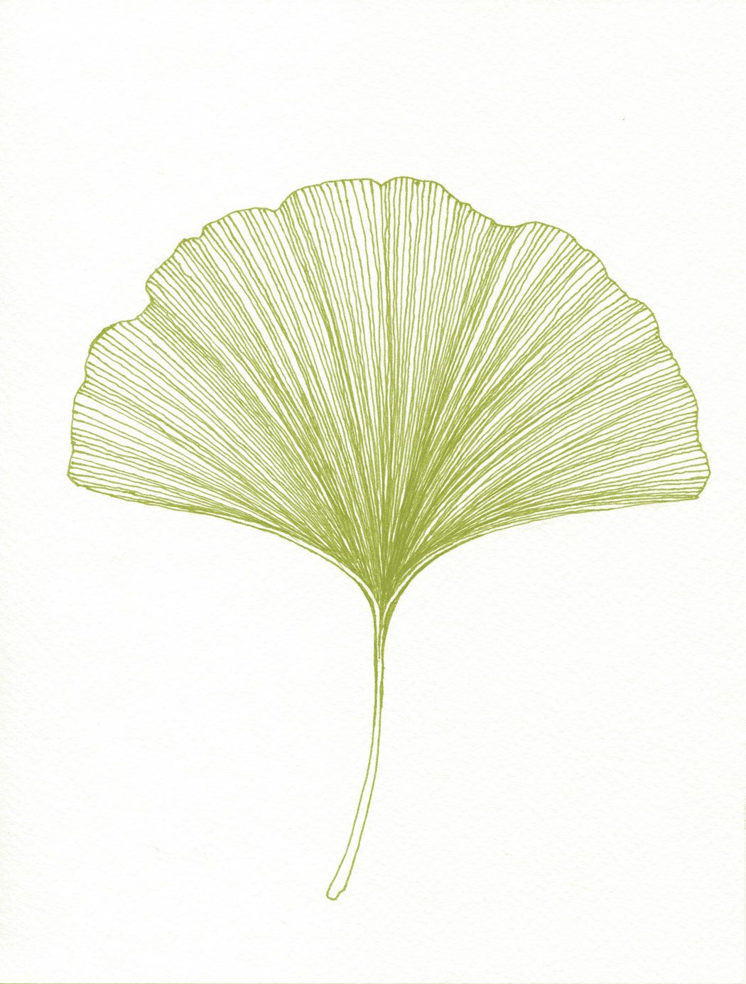 gingko leaf print of original black or green pen and ink drawing
