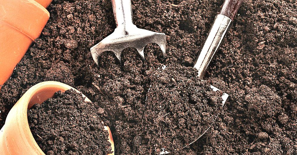 Every Gardener Needs To Know This Trick To Revive Old Potting Soil