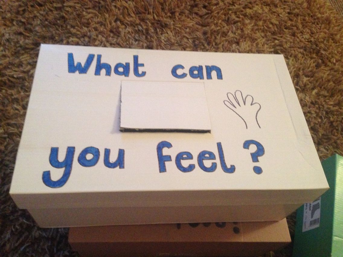 Touchy feely boxes for year one children focusing on the 5 senses ...