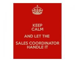 Sales Coordinator Required For Our Sales Team In Lahore  Localads
