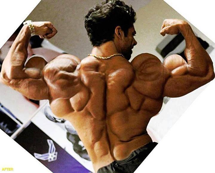 Crazy Back!! MuscleUp Bodybuilding. ~ mikE™ | Bodybuilding ...