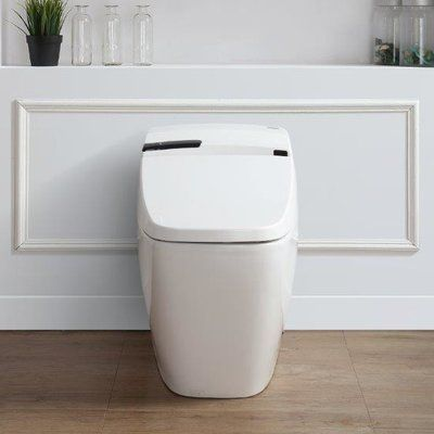 Super Ove Decors Bernard 1 6 Gpf Elongated One Piece Toilet With Uwap Interior Chair Design Uwaporg
