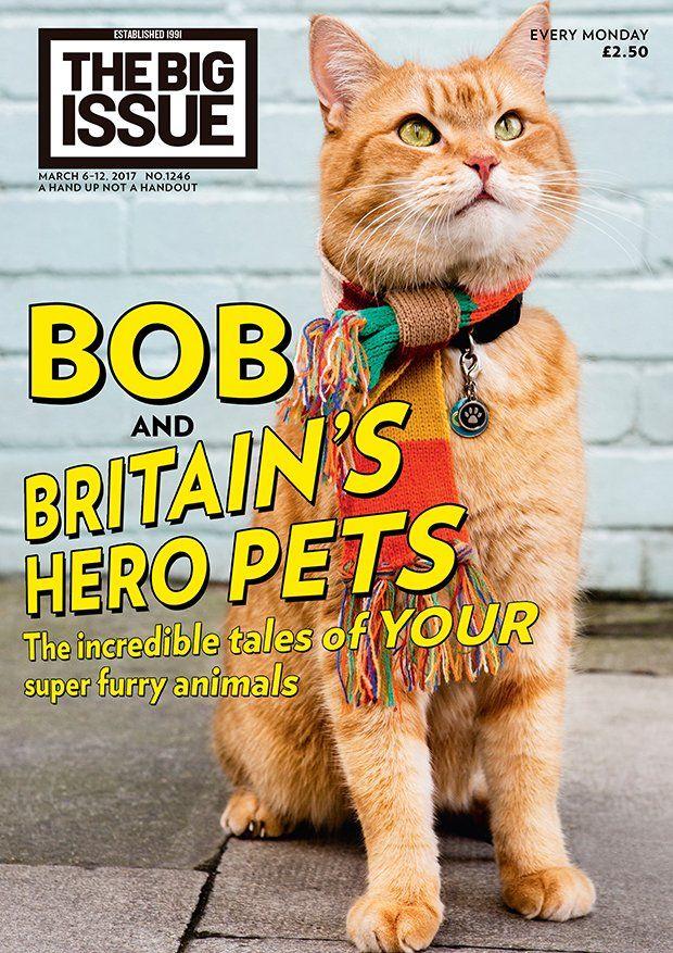 The Big Issue (BigIssue) Twitter Street cat bob