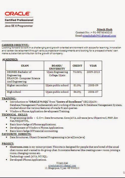 Euro Cv Format Sample Template Example Ofexcellent Curriculum