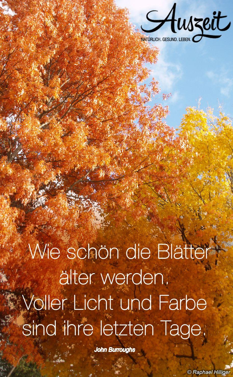 Herbst Zitate