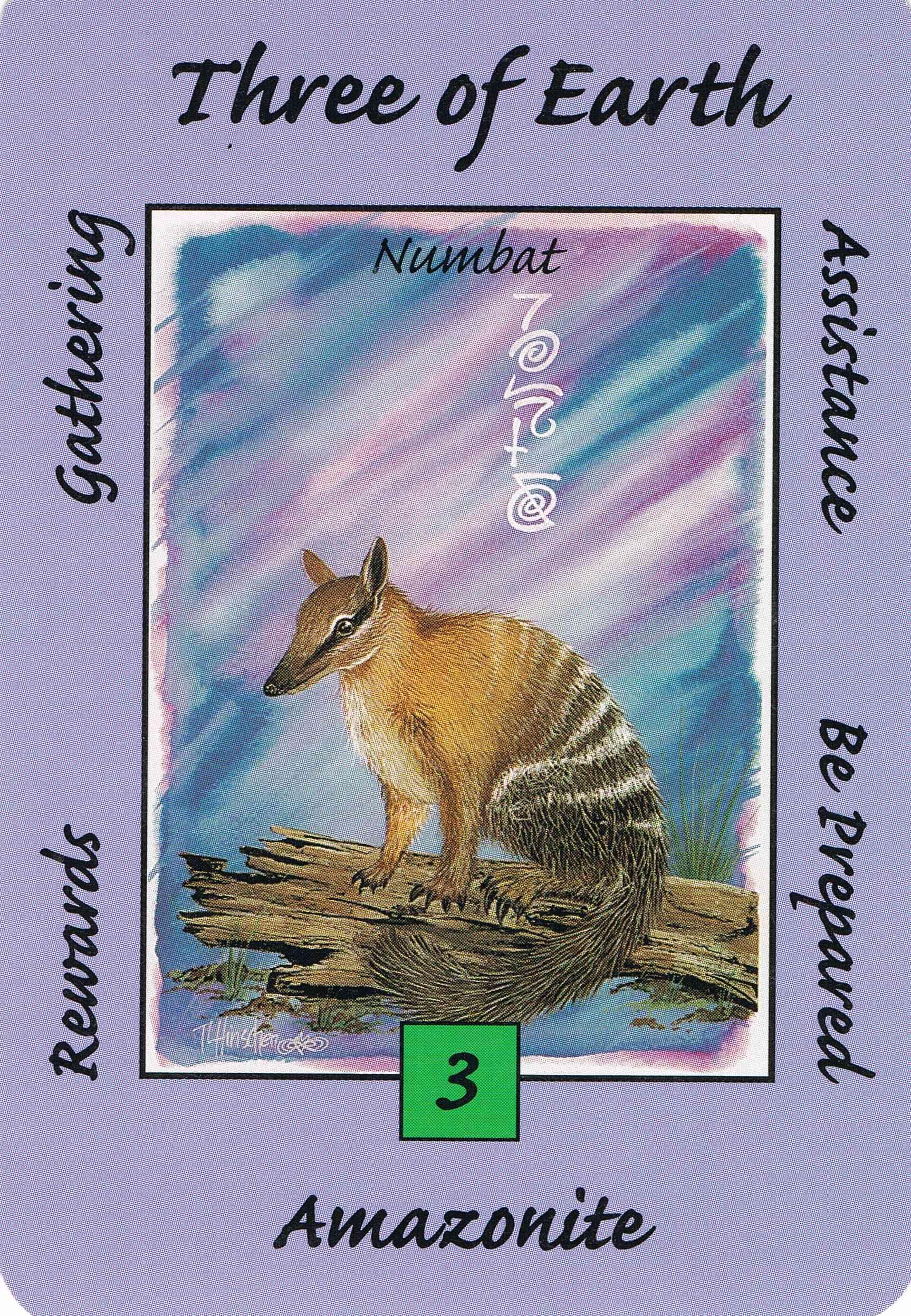 3earth numbat australian animal tarot deck your