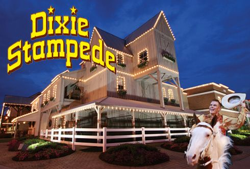 """There's a reason it's called """"the most fun place to eat in the Smokies."""" The Dixie Stampede never ceases to satisfy its audience with fun entertainment and delicious dinner. Visit this location in Dolly Parton's home state of Tennessee."""