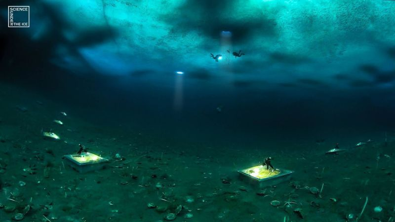 Beneath Antarctica\u0027s Sea Ice Scientists Discover a Rapidly Changing - marine biologist job description