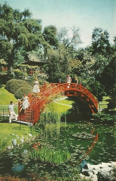 Japanese tea garden, Pasadena CA | National Geographic, February 1958